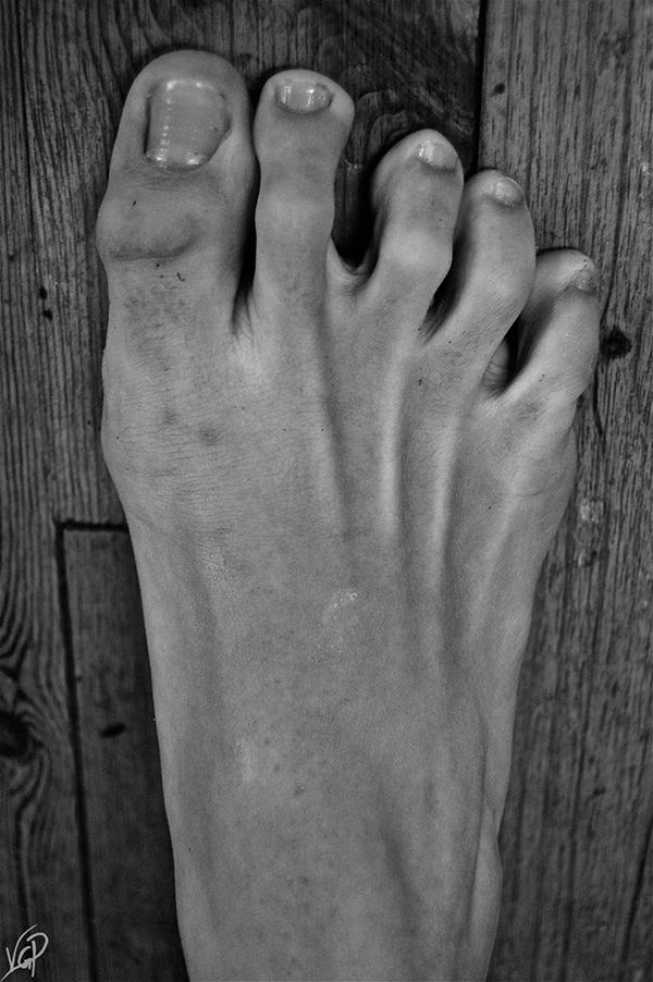 LA TRASPARENZA DELLA BELLEZZA|mostra fotografica|Lorenzo D'Amario Project in concerto|12-13-14 Aprile 2013