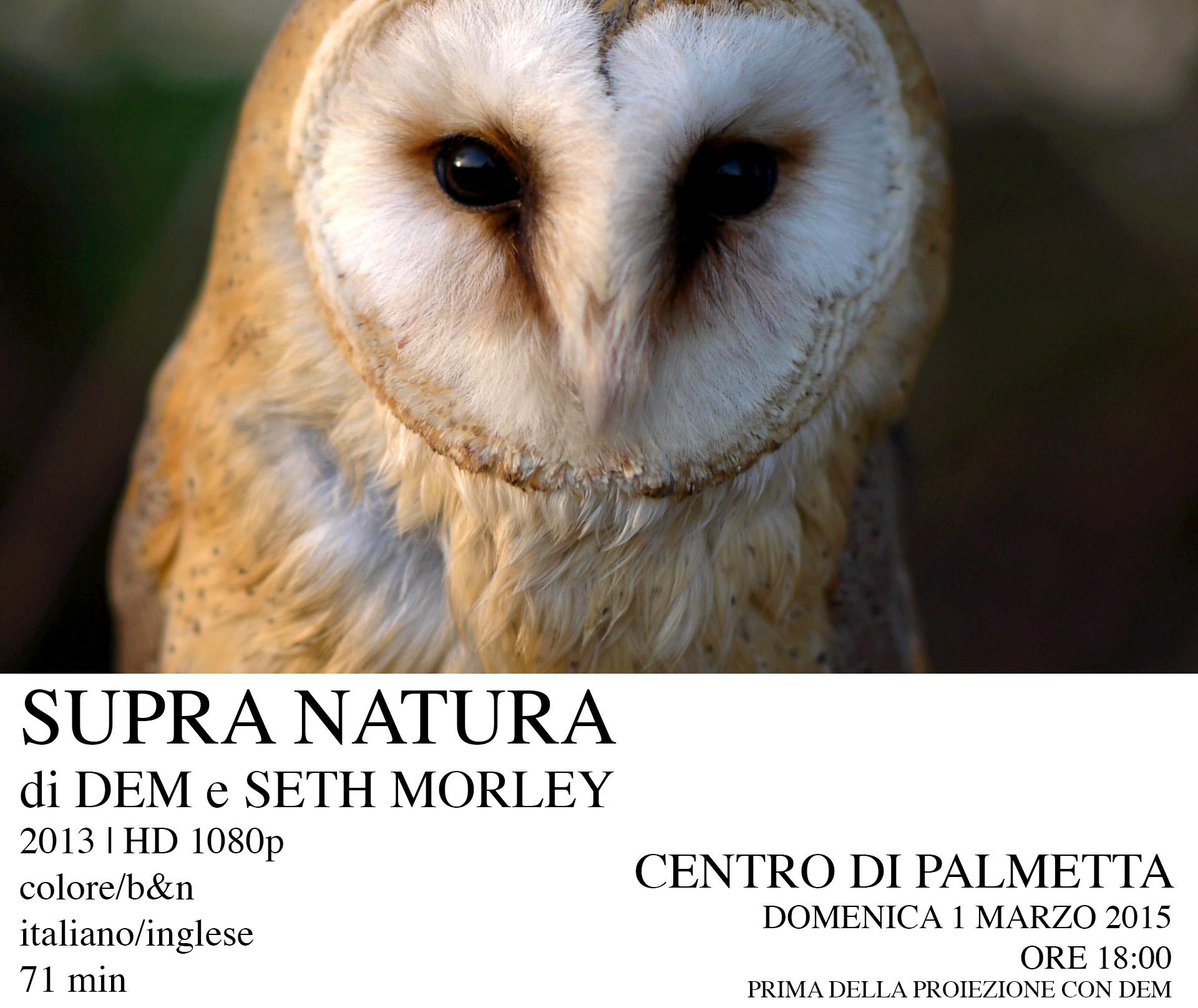 SUPRA NATURA di DEM e SETH MORLEY | Domenica 1 Marzo 2015  Ore 18:00