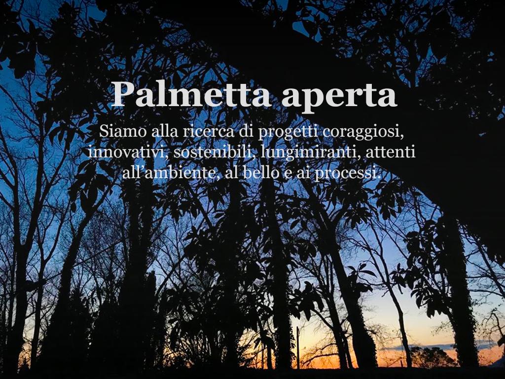 Palmetta Aperta
